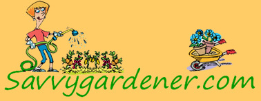 Welcome To Savvygardener Com Your Best Resource For